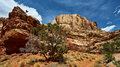 Capitol-Reef_IMG_9368_resize
